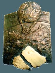 Plakette des Internationalen Wissenschaftspreises, Bronze 2012