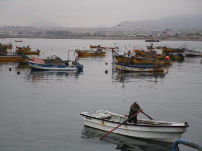 Fischerboote im Hafen von Coquimbo